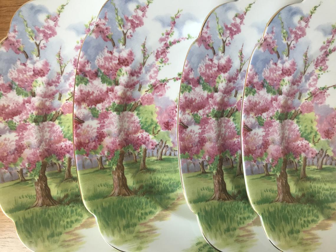 """Royal Albert Dinnerware, Bone China """"Blossom Time"""" Dinner Plates, Set of Four China Dinner Plates"""