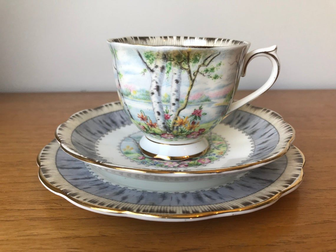"""Royal Albert """"Silver Birch"""" Vintage Teacup Trio, Birch Bark Trees Scene, Tea Cup and Saucer and Side Plate, Floral English Bone China"""